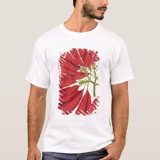 Poinsettia Pulcherrima (colour litho) T-Shirt