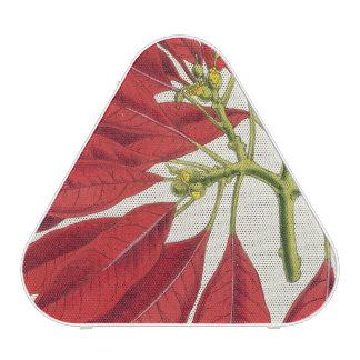 Poinsettia Pulcherrima (litho del color) Altavoz Bluetooth