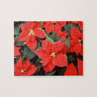 Poinsettia Red Christmas Flower Jigsaw Puzzle
