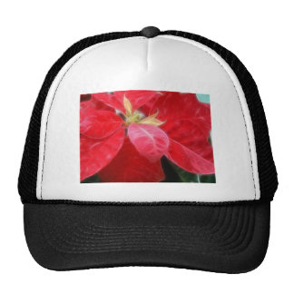 Poinsettia rojo abigarrado 2 gorras