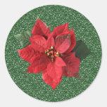 Poinsettia rojo en el pegatina verde del navidad