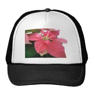 Poinsettia rosado 2 gorros bordados