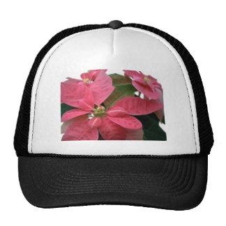 Poinsettia rosado 3 gorros bordados