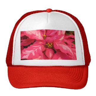 Poinsettia rosado de la hierbabuena gorro