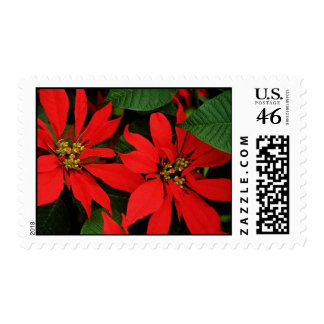 Poinsettia Stamps