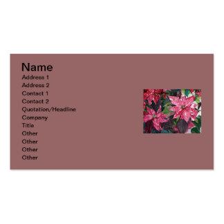 Poinsettia Tarjetas De Visita