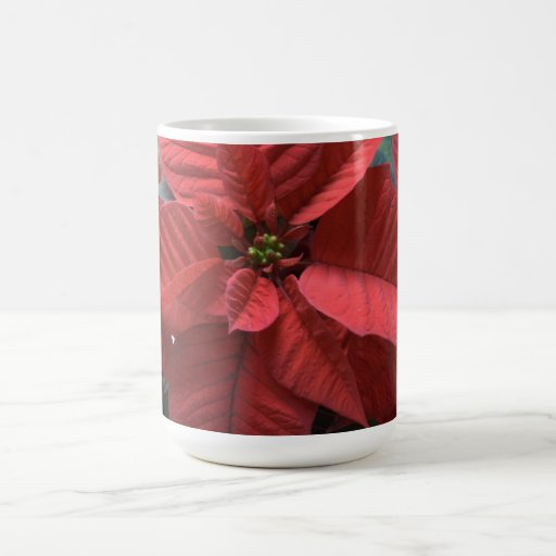 Poinsettia Taza Clásica