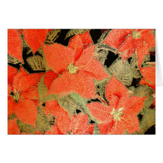 Poinsettia w/ Gold Frost - Yule Greeting Card