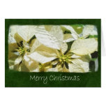 Poinsettias amarillos 2 - Felices Navidad Tarjeton