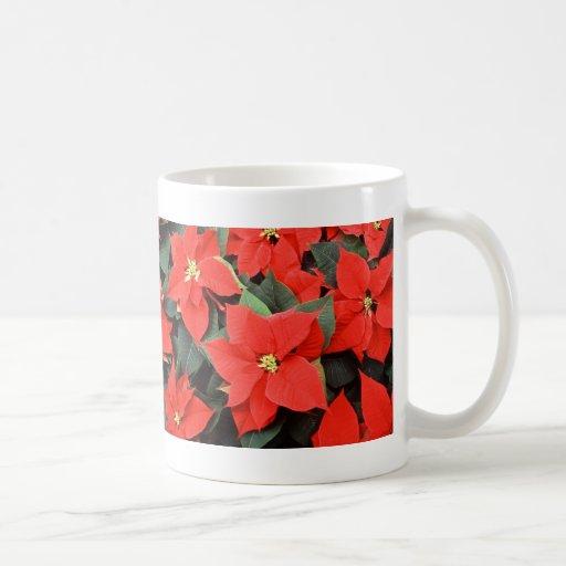 Poinsettias hermosos taza