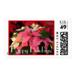 Poinsettias Pink Red White Postage Stamp