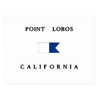 Point Lobos California Alpha Dive Flag Postcard