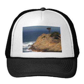 Point Lobos California Trucker Hat