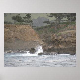 Point Lobos Print