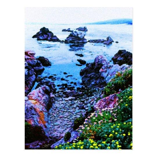 Point Lobos rocky beach Postcard