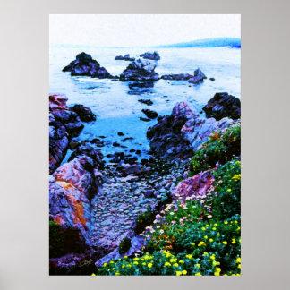 Point Lobos rocky beach Posters