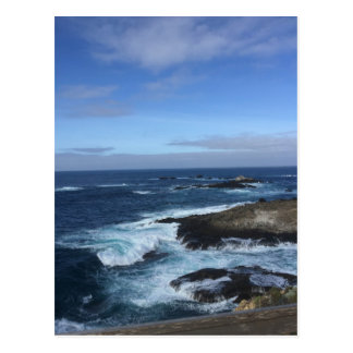 Point Lobos State Natural Reserve Postcard