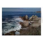 Point Lobos State Park Card