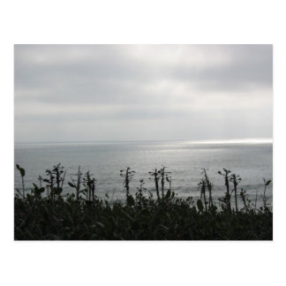 Point Loma Postcard