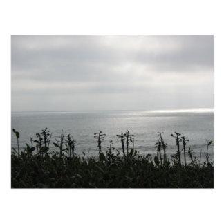 Point Loma Postales