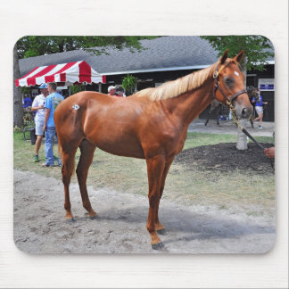 Point of Entry Colt Mouse Pad