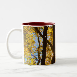 Point of Sun mug