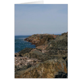 Point of the South Jetty Card