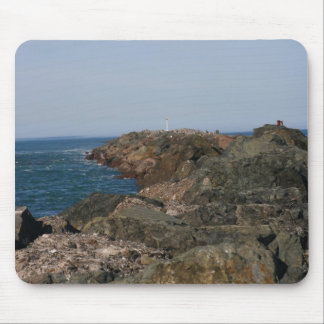 Point of the South Jetty Mouse Pad