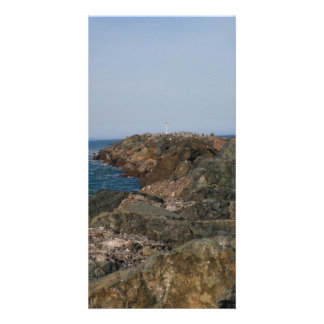 Point of the South Jetty Custom Photo Card
