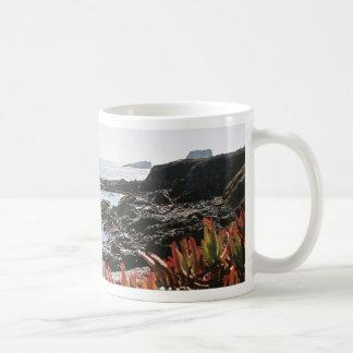 Point Piedras Blancas Mugs