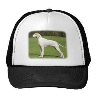 Pointer 9J34D-06 Mesh Hat