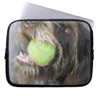 Pointer dog biting tennis ball, close-up computer sleeve