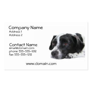 Pointer Dog Business Card