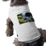 Pointer Dog Pet Shirt