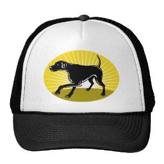Pointer dog with sunburst retro style trucker hat