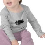 Pointer Infant T Shirt