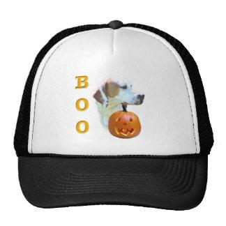 Pointer (Lemon Coated) Boo Trucker Hats