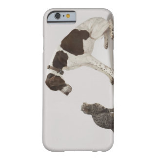 Pointer looking down at cat barely there iPhone 6 case