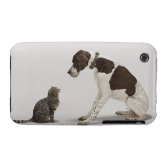 Pointer looking down at cat iPhone 3 case
