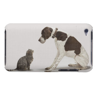 Pointer looking down at cat iPod touch cases