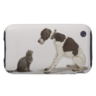 Pointer looking down at cat tough iPhone 3 cases