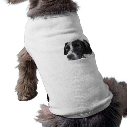 Pointer Pet Shirt