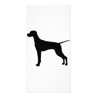 Pointer sporting hunting dog Silhouette Card