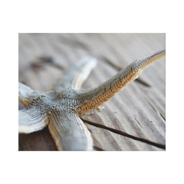 Beach Themed Pointing Starfish Canvas Print