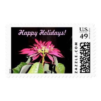 Pointsettia 2 stamps