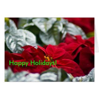Pointsettia Holiday Greeting Card