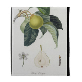 Poire d'ange, engraved by Bocourt, published 1755 iPad Cases