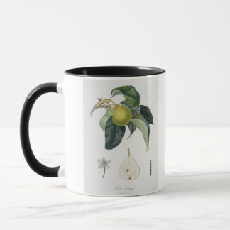 Poire d'ange, engraved by Bocourt, published 1755 Mug