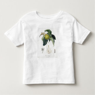 Poire d'ange, engraved by Bocourt, published 1755 Toddler T-shirt