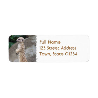 Poised Meerkat Mailing Labels